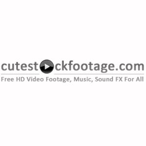 Cute Stock Footage